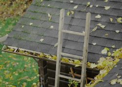 Gutter Clean-Out